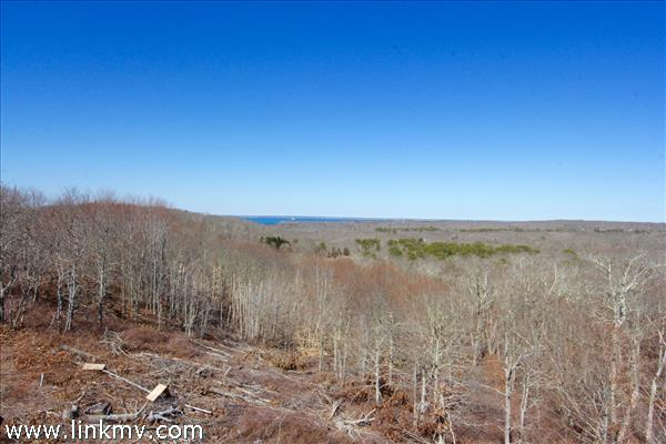 38 Fire Tower Road, West Tisbury, MA