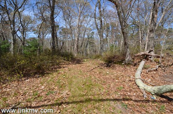 Lot 5-C Greenwood Avenue Extension, Vineyard Haven, MA