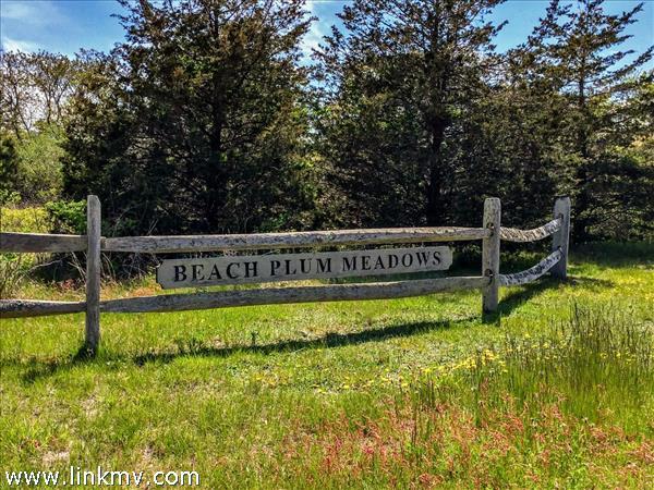 3 Beach Plum Meadows