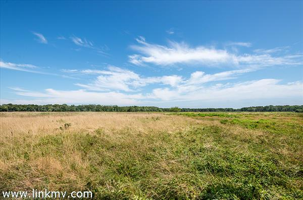 31 Old Farms Trail, Edgartown, MA