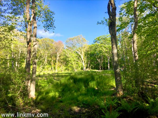 108 Hebrons Way Moshup Trail, Aquinnah, MA