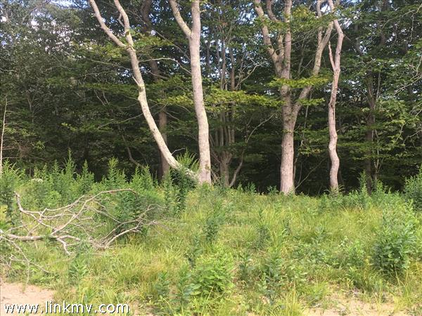 2 Maple Hill Drive, Aquinnah, MA